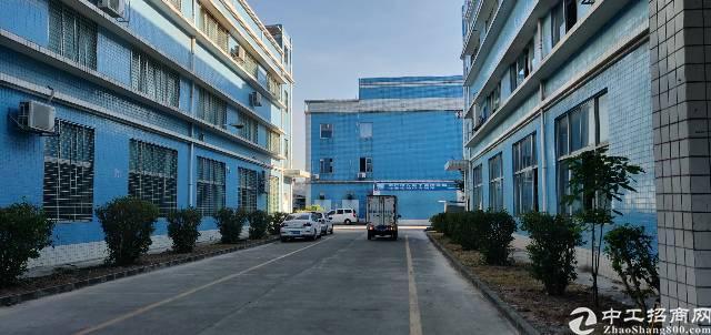 坪山坑梓新出2楼2000平精装修带地坪漆红本厂房可分租