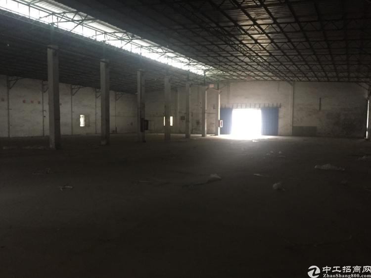 坪山滴水8米6000平米仓库厂房招租,大货车随便进出