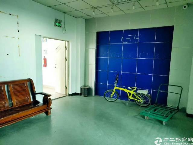 西乡簕竹角,楼上新出厂房1350平,带装修,无需转让费-图7