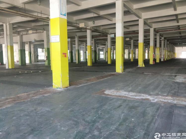 东莞靠深圳2万平米物流园出租有房产证和消防批文