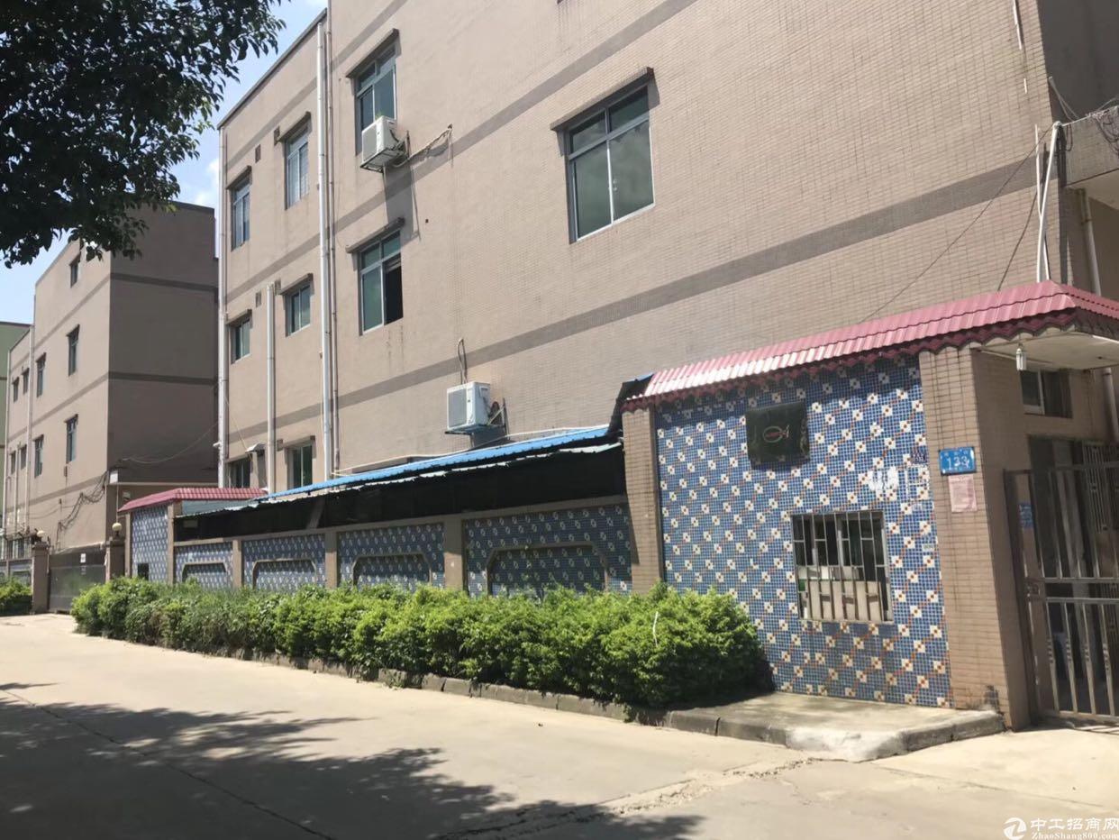 东莞市国有证独院标准厂房出售!