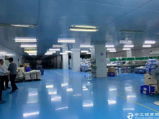 惠州市现有独门独院标准厂房带地坪漆