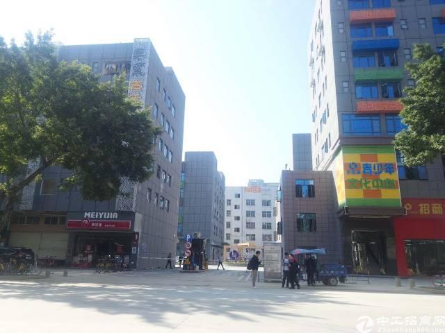西乡宝安大道边新出楼上1600平文创双补贴园区出租,可分租