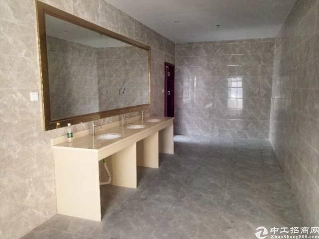 西乡桃源居附近写字楼238平米招租