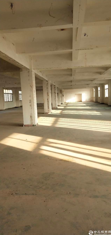 宝安西乡鹤洲新出楼上厂房500平方
