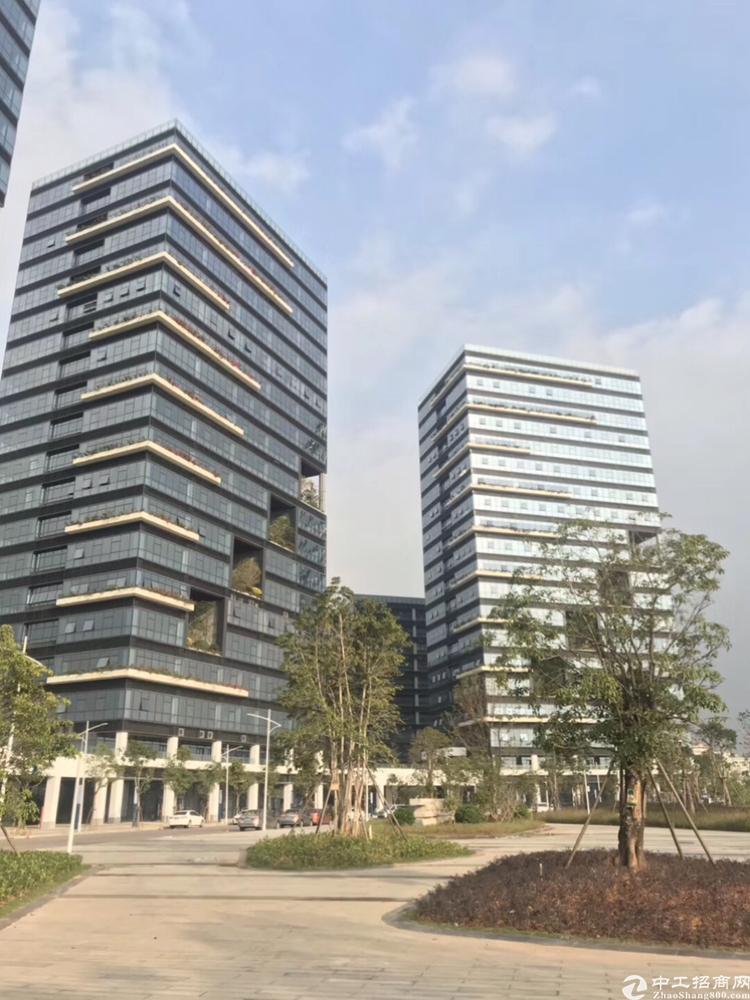 宝安松岗全新写字楼出售234平米独立红本50年产权可按揭