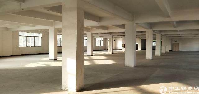 宝安西乡鹤洲新出厂房500-1500平方
