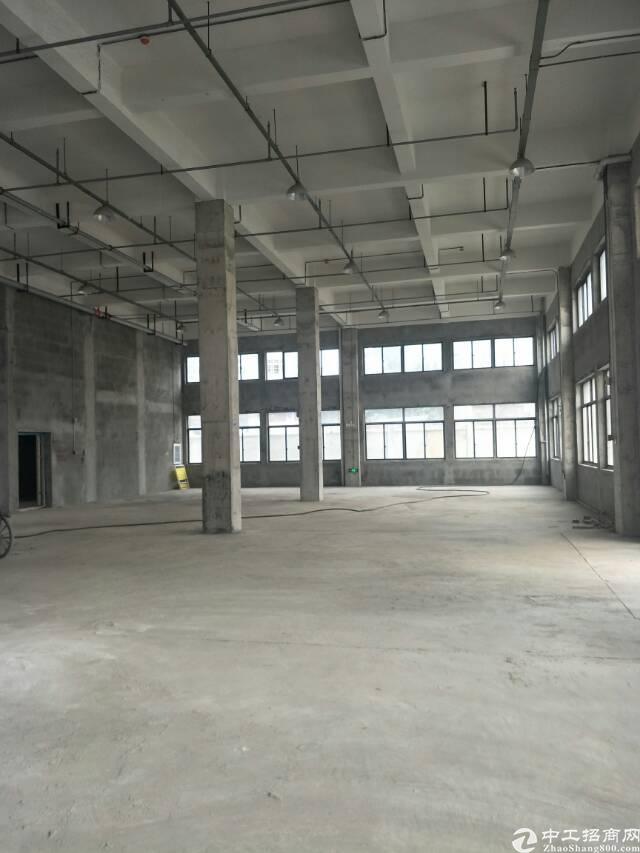 黄陂4300平独栋厂房-图3