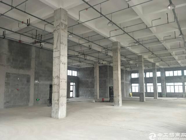 黄陂4300平独栋厂房-图4