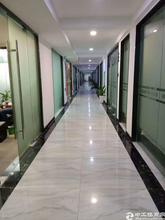 龙华天虹旁金龙华320平办公室3+1格局