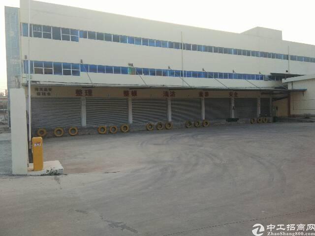 茶山镇新出原房东7000平保税仓库