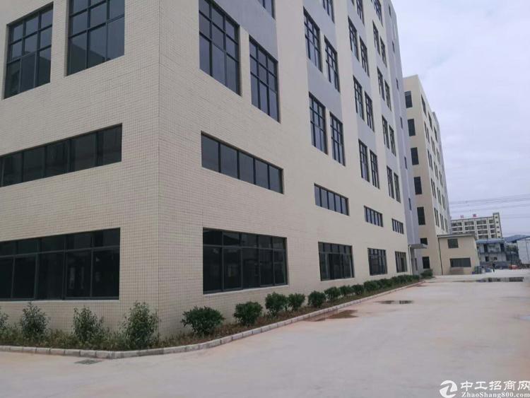 惠阳沙田全新红本工业园10万平方出租可分独院一楼7米带牛角
