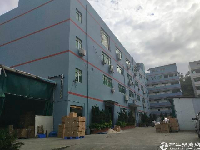平湖沈海高速路口500米原房东厂房1200平方,有电梯