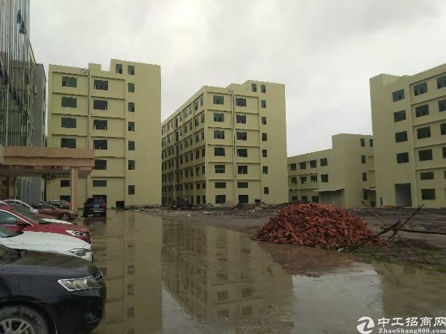 惠州最优惠全新标准厂房出租