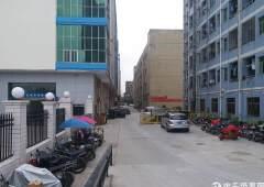 观澜税务局旁写字楼招租,适合会计,税务公司