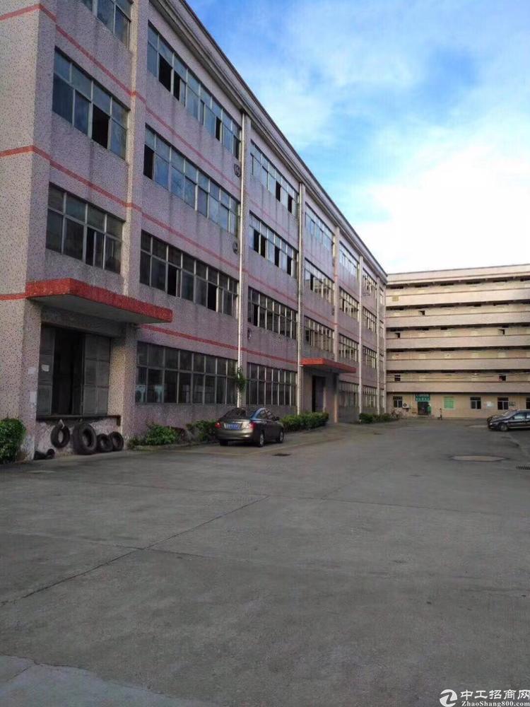 同乐楼上1650平米厂房出租可分租