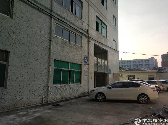 横岗大康空出原房东独门独院4800平厂房四层有两吨电梯