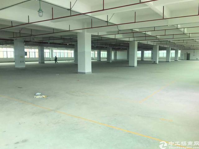 横岗全新升级8万平高新产业园高新厂业优惠多多距高速3公里左右