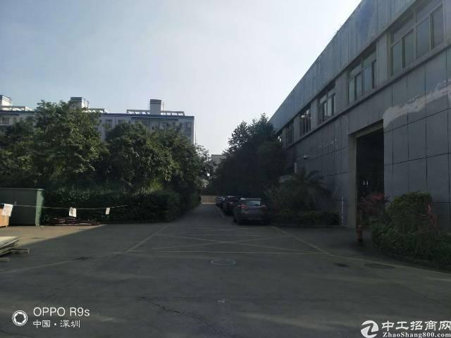 观澜主干道边原房东独门独院两层2300平方实际面积出租