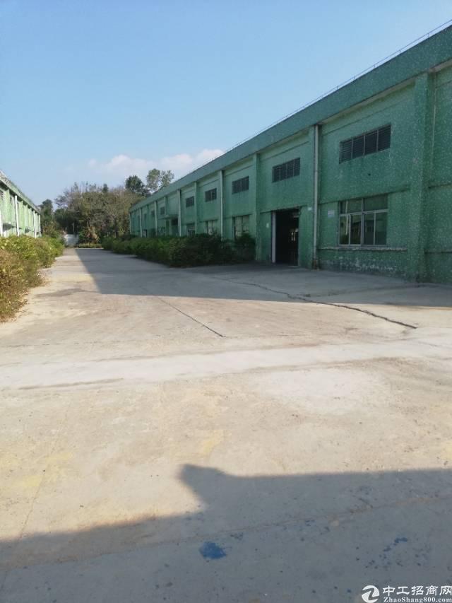 惠州市惠东白花占地25000㎡标准钢结构厂房出售