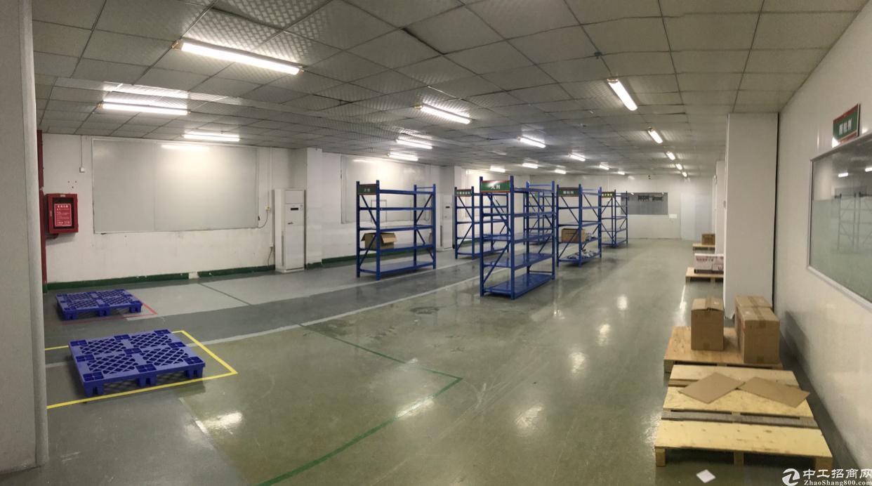 坑梓新出楼上600平电子贸易精装厂房-图4