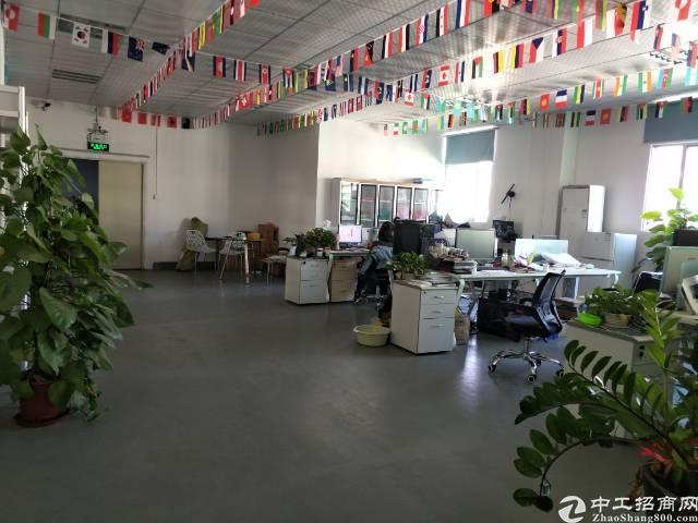 沙井镇沙三创业园5楼半层1000平方实际面积出租