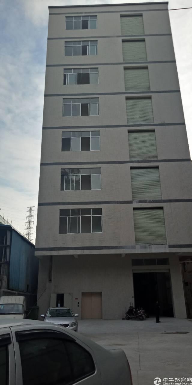 杨屋全新标准厂房带牛角900平米