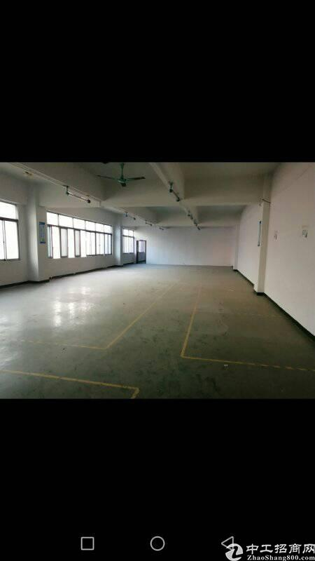 西乡鹤洲深业U中心附近800平方租金32元