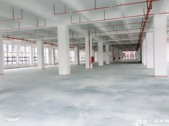 沙井楼上整层4500平厂房出租