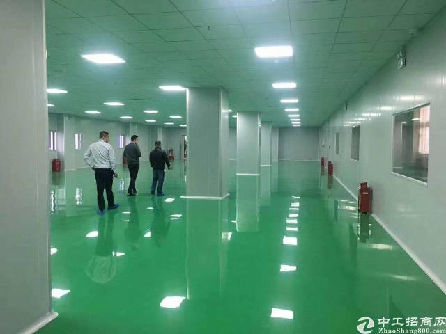 惠东白花新出电子厂带豪华装修,无需转证费