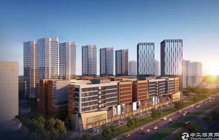 东莞市常平项目全新一手厂房独立红本5成首付