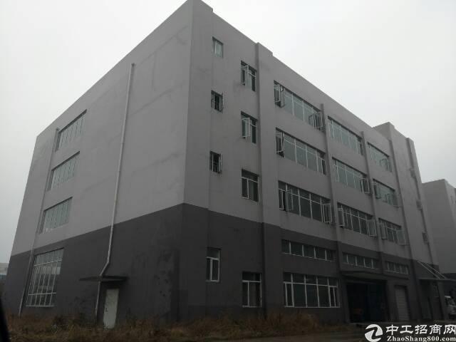 汉口北食品园3000平米厂房,可分租,生产加工仓储,进出便利