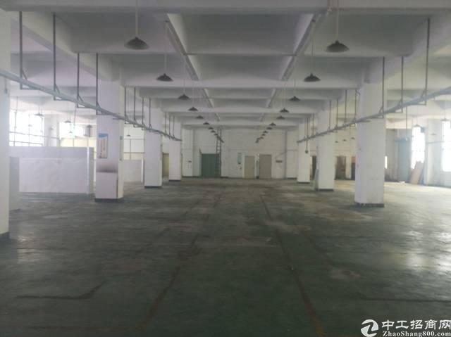 宝安新出带精装修办公室楼上厂房2400平方-图2