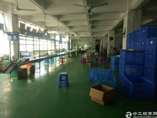 西乡簕竹角新出厂房1360平方