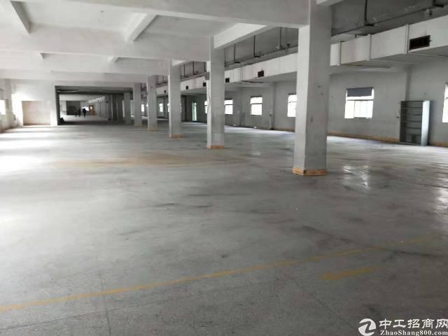 公明塘尾第一工业区独院两层2500平米厂房出租-图2