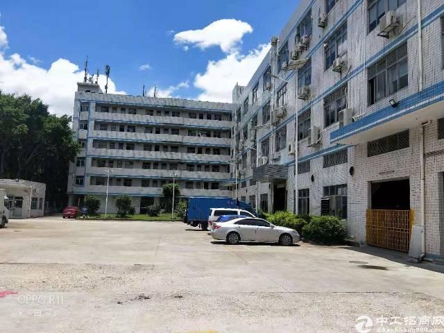 龙岗宝龙一楼1800平出租,层高6米