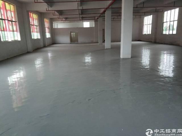惠州惠阳新出标准独院厂房有红本好办环评