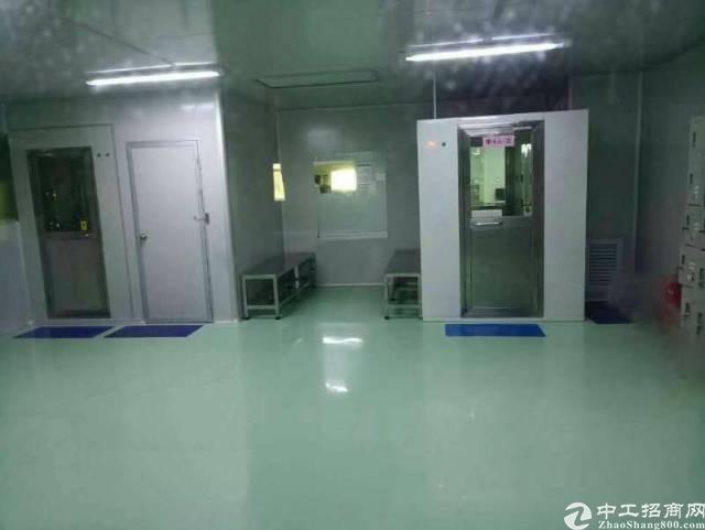 东莞黄江新出楼上万级无尘车间3000平招租可分租
