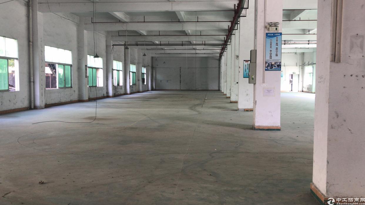 龙岗南联新出一楼1300平方高度六米