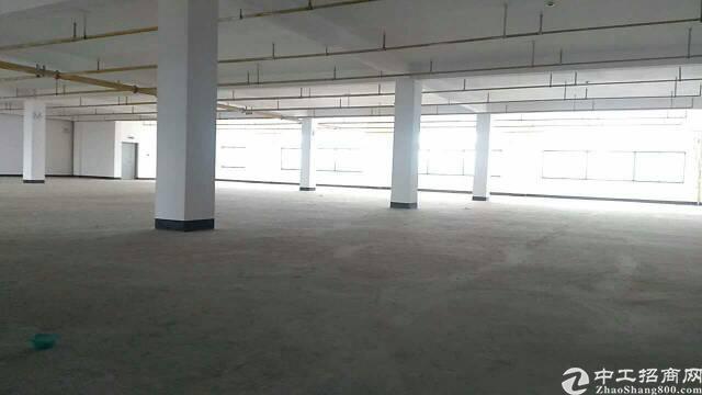 黄陂1000平优质厂房,可做重工-图3