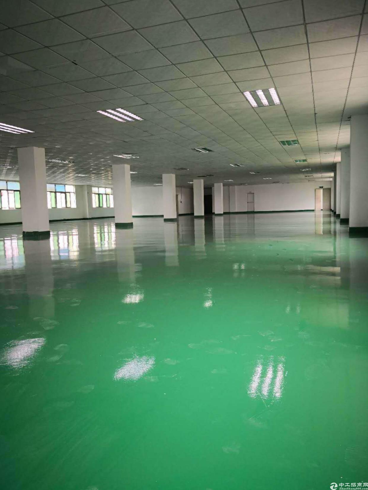 观澜牛湖独院新装修的厂房每层1450X5证件齐全原房东
