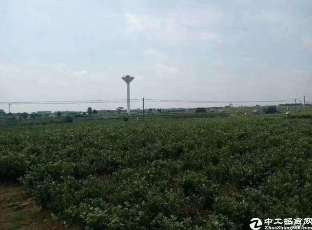鹤山市未来规划                             土地