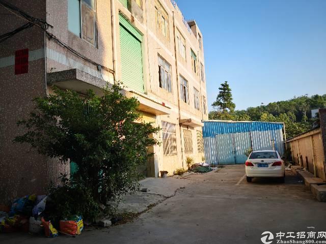 龙岗同乐9.9元厂房出租面积200-1000平带红本合同长