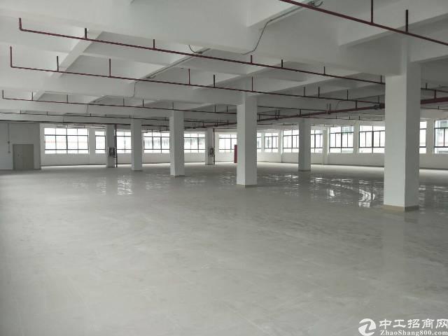坪山坑梓新出独院2楼整层1250平,红本厂房出租