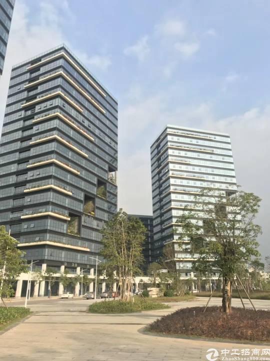 松山湖高端独立红本写字楼1.复试办公,楼高20层,买一层用