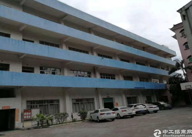 惠阳新圩7900平厂房