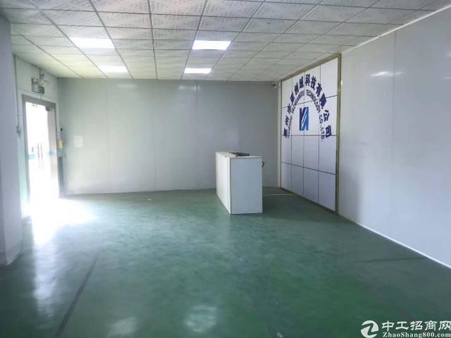 仲恺陈江红本独院带装修标准厂房26000平-图2