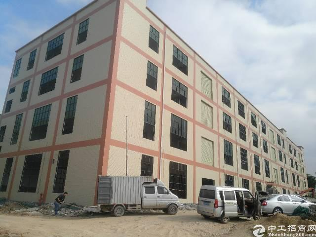 仲恺全新厂房2300一平,水电消防全到位