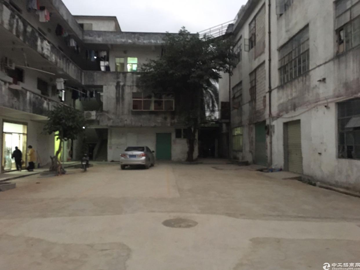 坪山六联一楼仓库15元独院厂房