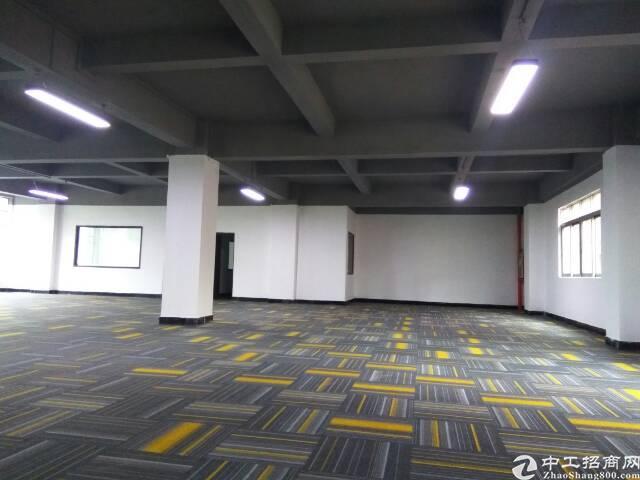 厚街大道东纯写字楼低价出租200-1400平